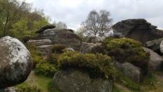 Brimham Rocks. North Yorkshire, England. April 2017.