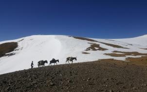 Ugam-Chatkal National Park, Tien Shan mountain system. Uzbekistan, October 2017.