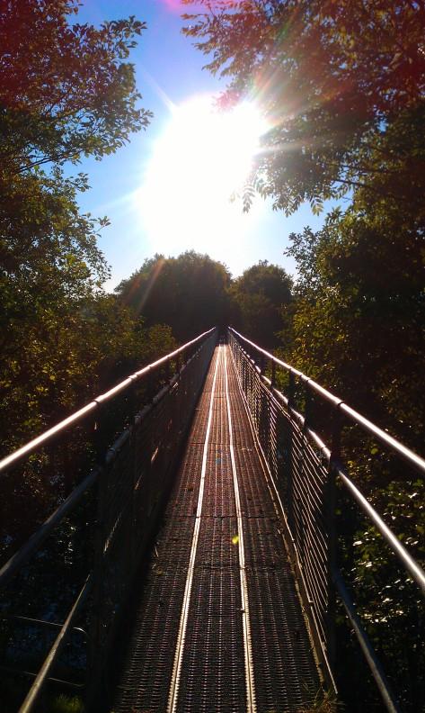 The bridge through air.