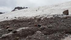 Reaching the dark glacier.