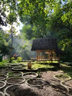 Java, Indonesia. February 2020.