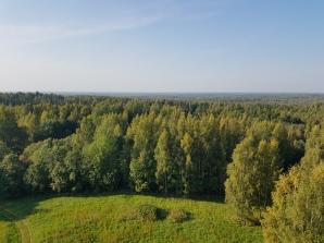 Paganamaa. Estonia, September 2020.